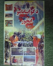 Titelseite des Guantanamo-Erinnerungen Sa'ifs.